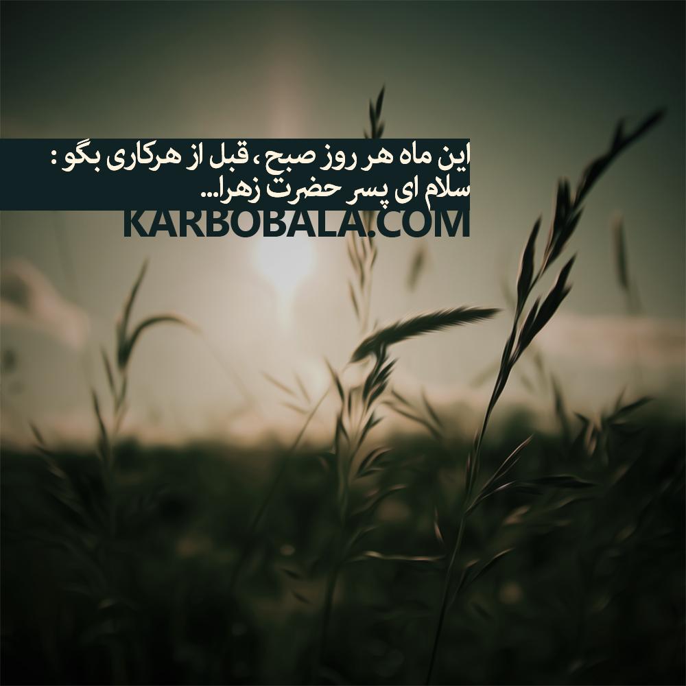 سلام ای پسر حضرت زهرا (س)/اعیاد شعبانیه