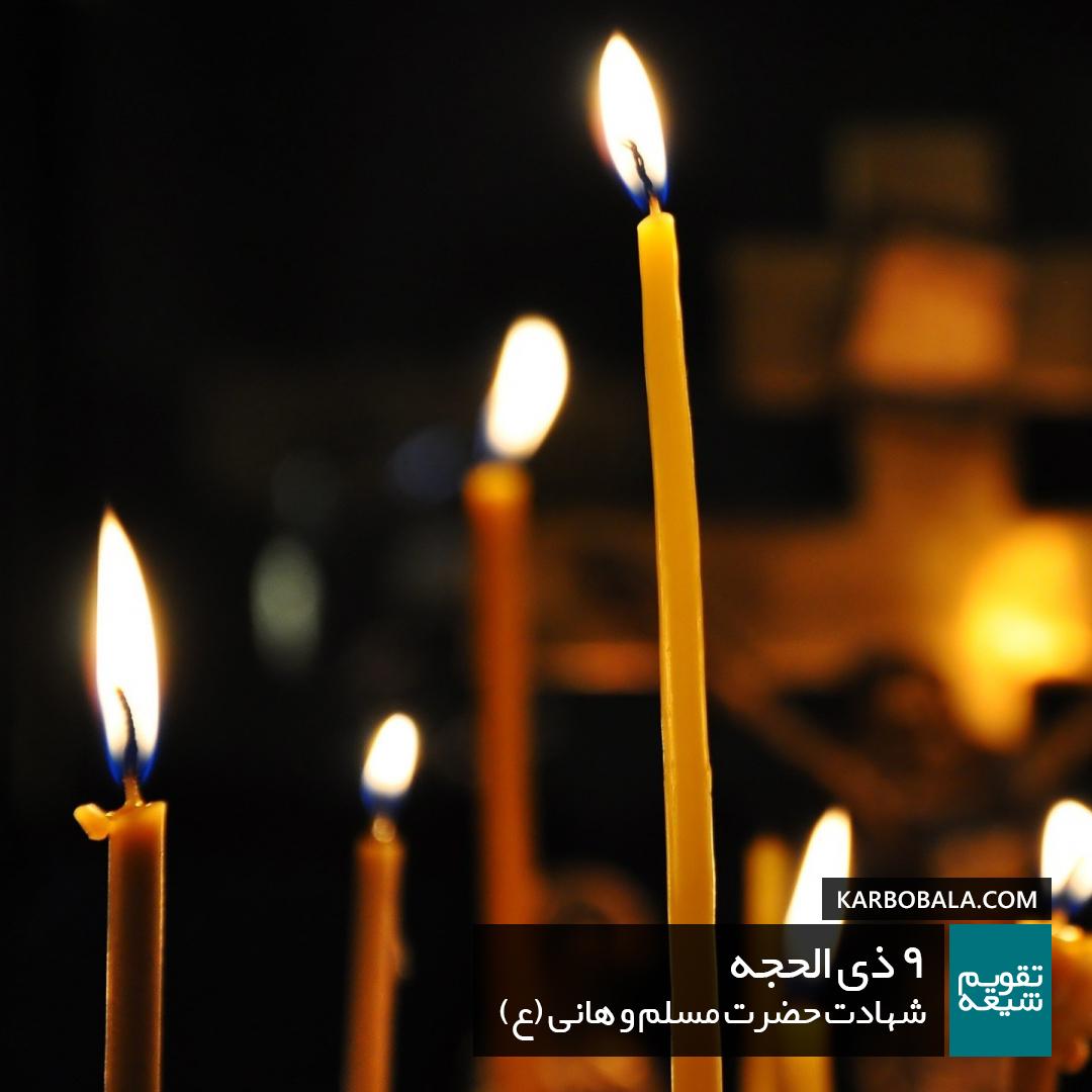 9 ذی الحجه /شهادت حضرت مسلم و هانی (ع)