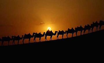 جلو گیری از خروج امام حسین از مکه و منازل راه تا کربلا