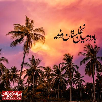 همراه با کاروان حسینی تا اربعین / دوم محرم +فایل صوتی