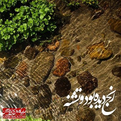 همراه با کاروان حسینی تا اربعین | بیست و دوم محرم