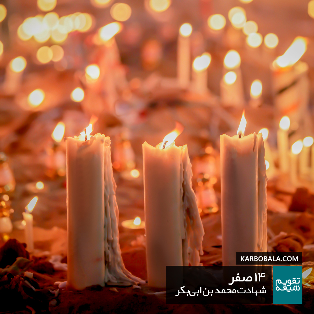 14 صفر   شهادت محمد بن ابیبکر