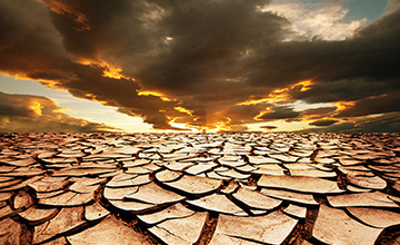 آیا در روز عاشورا اصحاب امام حسین (ع) با حفر چاه امکان دسترسی به آب را نداشتند؟
