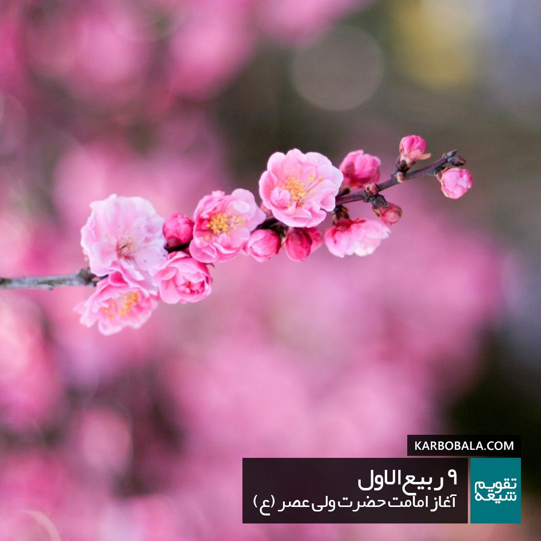 9 ربیع الاول / آغاز امامت حضرت ولی عصر (ع)