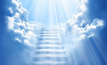 بلای الهی نردبان سلوک مؤمنین