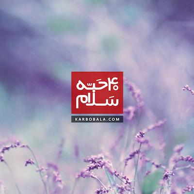 40 حبه سلام / چله زیارت عاشورا