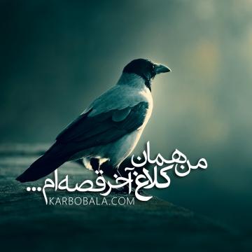 من همان کلاغ آخر قصه ام / سلام شب های جمعه