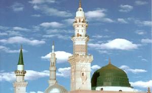 حضرت زهرا و حسنین در مصیبت حضرت رسول  (ع)