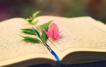 بینامتنیت دعای چهارم صحیفه سجادیه و قرآن