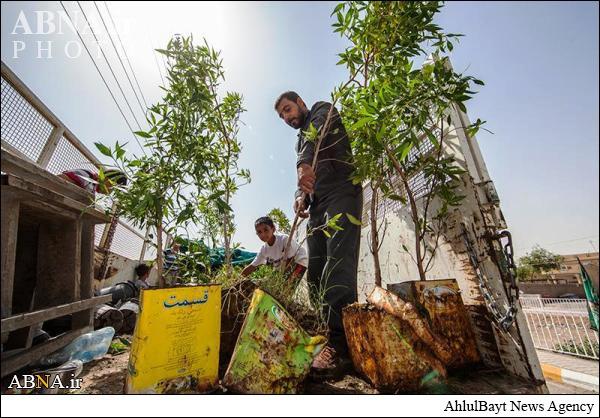 زیباسازی شهر آمرلی به همت آستان حرم حضرت عباس(ع)/ تصاویر