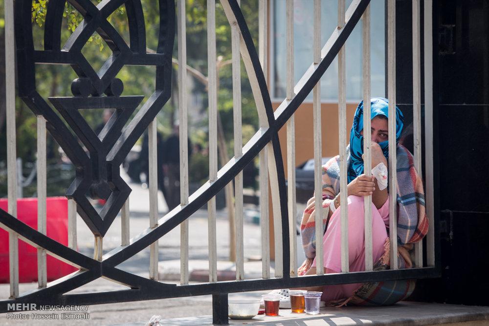 متوسلین حسینی/ گالری عکس