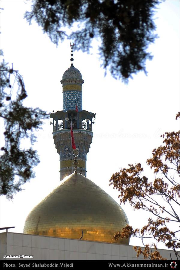 به بهانه میلاد حضرت زینب (س)/ گزارش تصویری