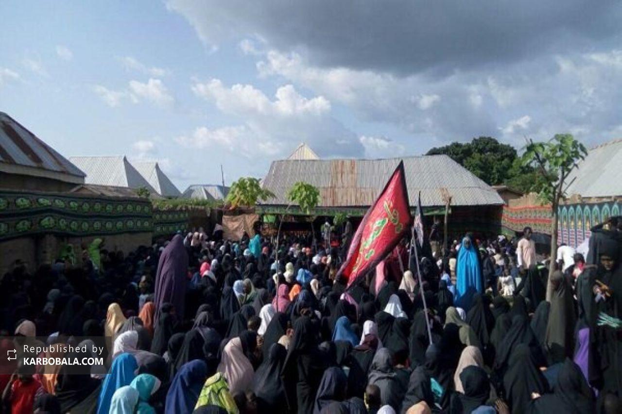 یورش ارتش به عزاداران حسینی در نیجریه