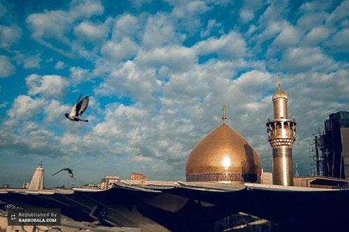 حال و هوای بارانی بارگاه حضرت علی (ع)/ گزارش تصویری