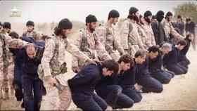 انتقاد یکی از رهبران القاعده از سر بریدنهای داعش