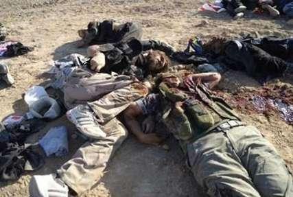 هلاکت 16 تروریست داعش در سوریه
