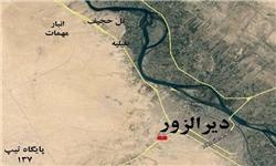 انتشار بیماریهای پوستی بین عناصر داعش