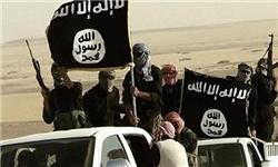 داعش 56 عضو خود را اعدام کرد