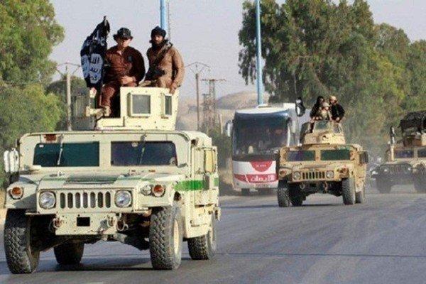 داعش 20 عضو خود را اعدام کرد