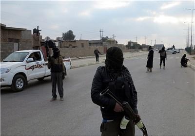هلاکت داماد خلیفه داعش