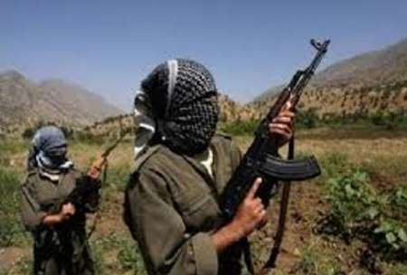 یکهزار و300 تبعه ترکیه عضو داعش هستند