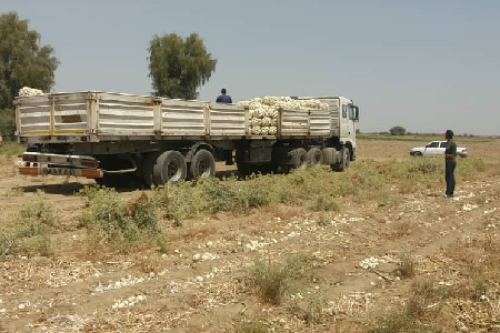تلاش هیئتیها برای کمک به کشاورزان جنوب کشور