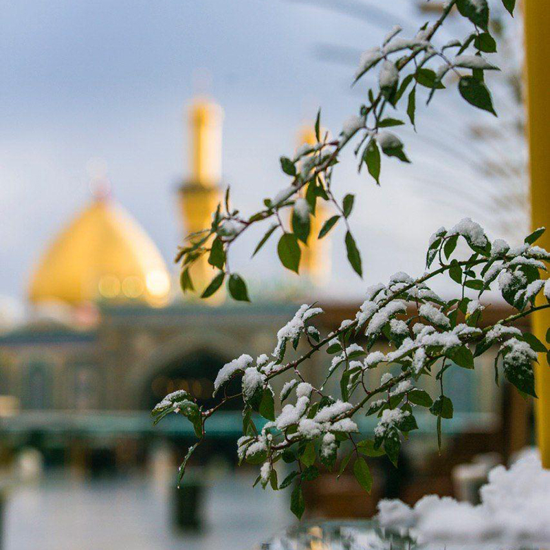 تصاویر دیدنی از بارش برف زمستانی در کربلای معلی