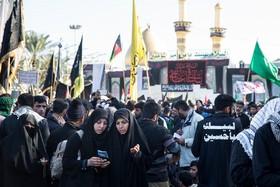 همکاری ایران و عراق در راهپیمایی اربعین، در دنیا بیسابقه بود