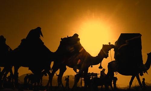 چرا امام حسین(ع) زنان و کودکان را با خود همراه کرد؟