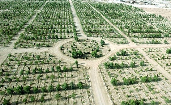 اجرای طرح کمربند سبز در کربلا