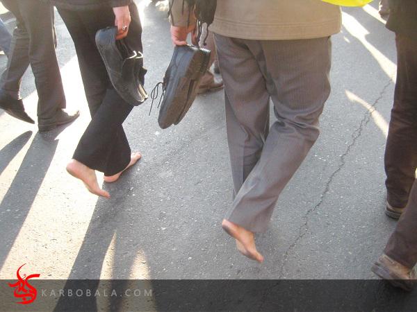 تصاویر پیاده روی میدان امام حسین تا حرم حضرت عبدالعظیم / ارسالی خادمین افتخاری