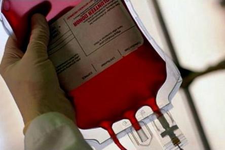 نذر خون برای احترام به امام حسین (ع) در نروژ