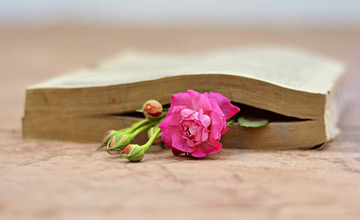 نام پانزده ذاکر شاعر یــا شاعر ذاکر به بهانه پانزدهم ماه رمضان