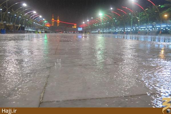حال و هوای بارانی در کربلا / تصاویر