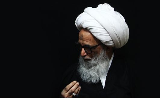 دیدار عمار الحکیم و عوامل آستان قدس علوی و عباسی با حضرت آیت الله نجفی + تصاویر