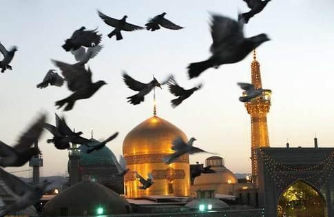 هیاتهای عزاداری به پرچم امام رضا مزین میشوند