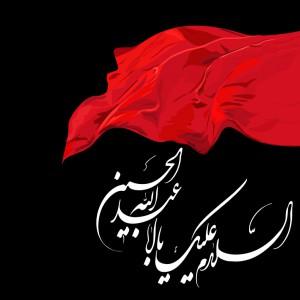 سنگ اندازی در مراسم عزاداری شیعیان پاکستان