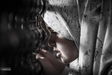 زائر پاک حسینی در حرم مطهر آن حضرت