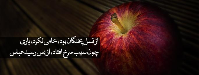 چون سیب سرخ افتاد، از بس رسید عباس