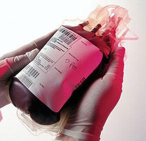 یاداشتی از رییس اداره ارتباطات و رسانههای سازمان انتقال خون برای سایت کرب و بلا